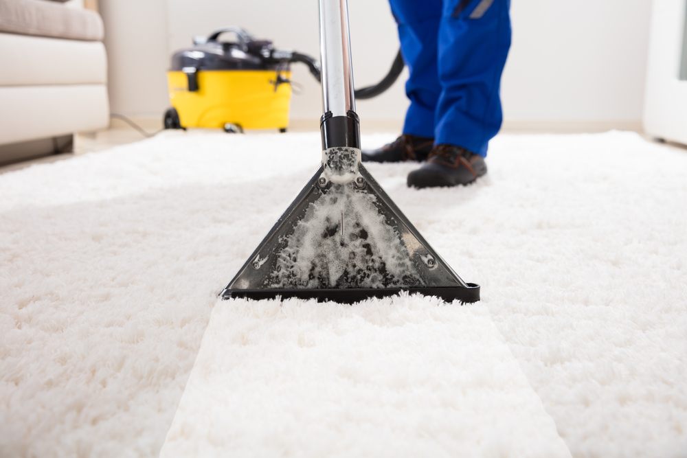 Professional carpeting cleaning services - restoration 1