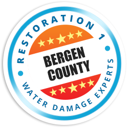 Bergen County Badge