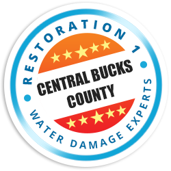 Central Bucks County Badge