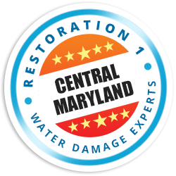 Central Maryland Badge