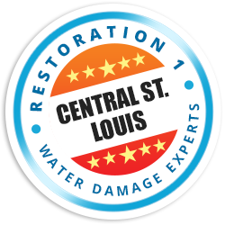 Central St. Louis Badge