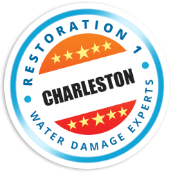 Charleston Badge