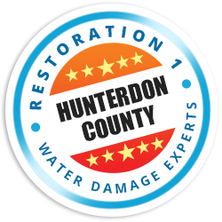 Hunterdon County Badge