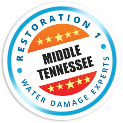 Middle Tennessee Badge