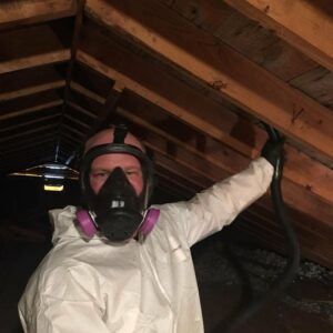 Expert Mold Removal, Mold Remediation & Inspection Services