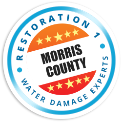 Morris County Badge