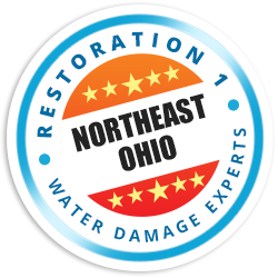 Northeast Ohio Badge