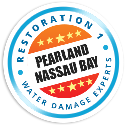 Pearland Nassau Bay Badge