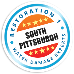 Pittsburgh South Hills Badge
