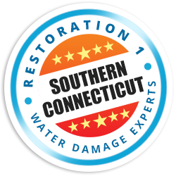 Southern Connecticut Badge