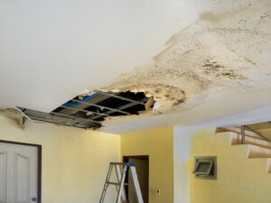 Detect a hidden water leak quickly to mitigate water damage and mold growth.