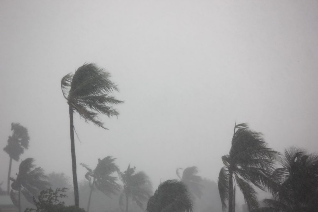Contact your insurance carrier to determine hurricane damage coverage amounts and fine print.