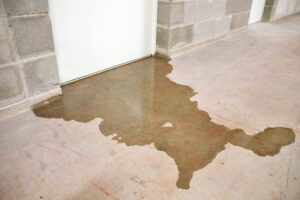 Prevent excessive contamination and damage from black water with a local restoration company.