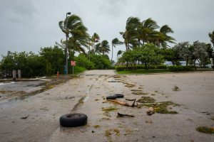 Take Steps To Prepare Your Home For Hurricane Season This Summer!