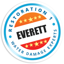 Water Damage Fire Damage And Mold Removal Service In