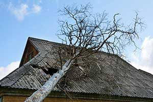 After a severe storm, here is what will happen and when to call for restoration services.