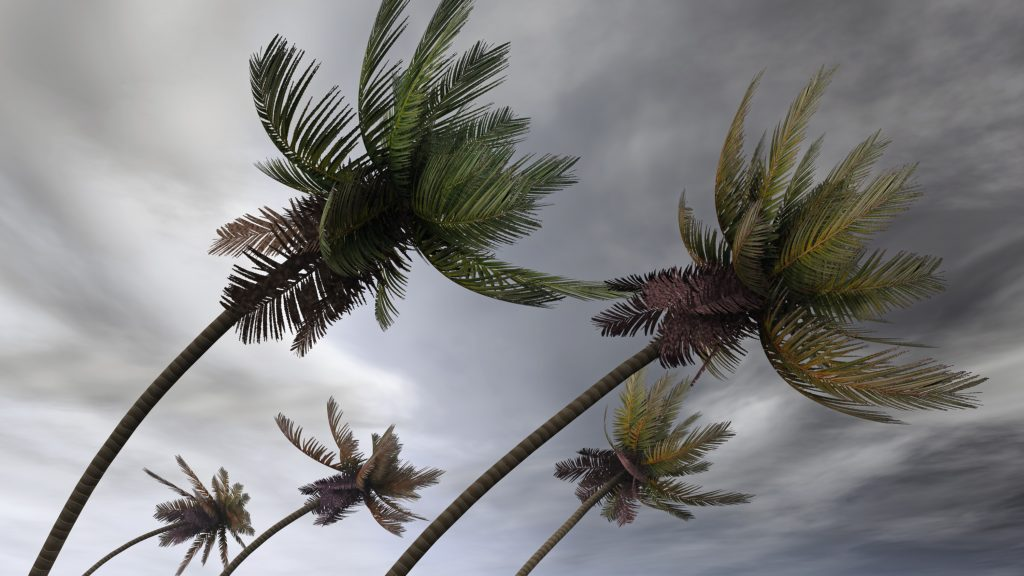 Protect your home, business, and family from Tropical Storm Dorian by preparing ahead of time.