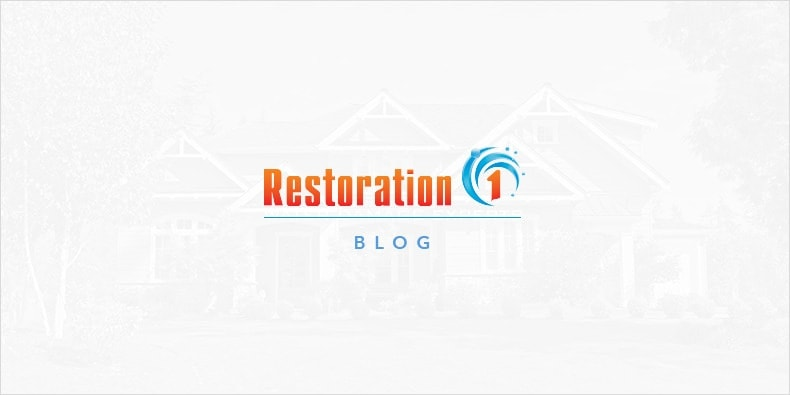 5 Water Damage Restoration Tips Everyone Should Know